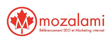 SEO Consultant Mozalami à Montréal